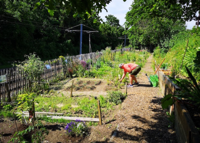 Image JARDIN SOLIDAIRE